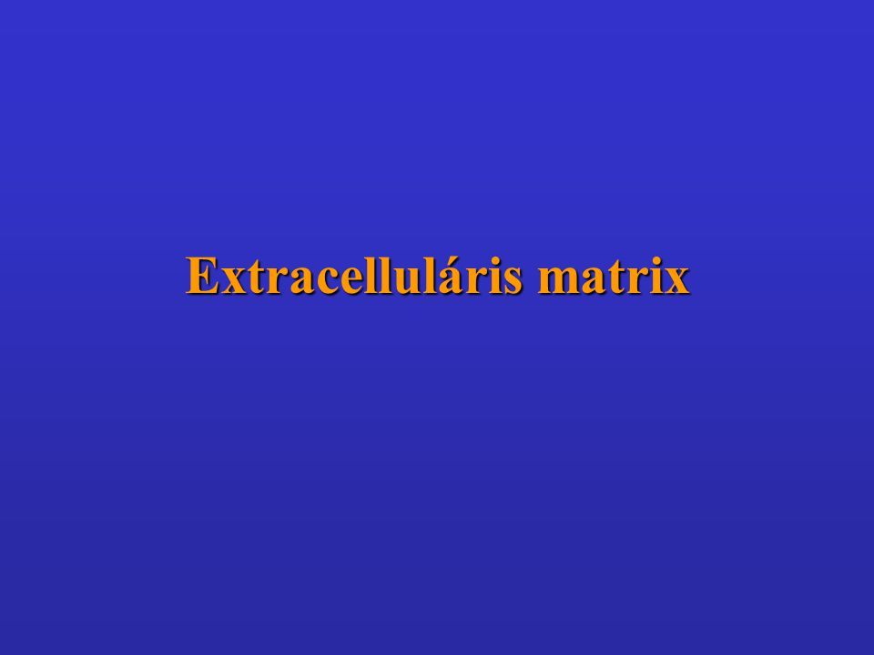 Extracelluláris matrix