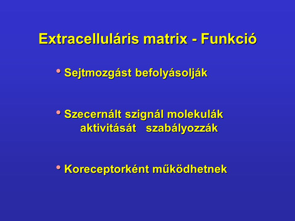Extracelluláris matrix - Funkció