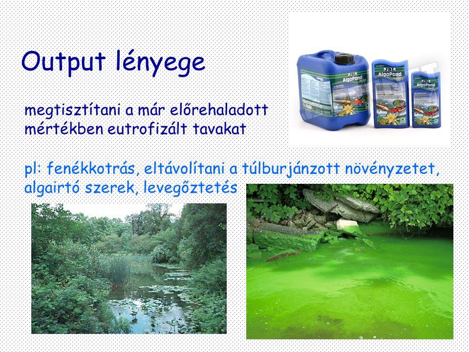 Output lényege megtisztítani a már előrehaladott mértékben eutrofizált tavakat.
