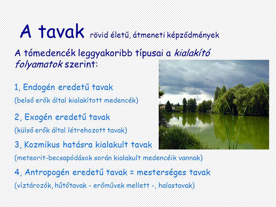 A tavak rövid életű, átmeneti képződmények