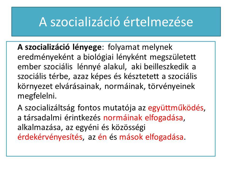 A szocializáció értelmezése