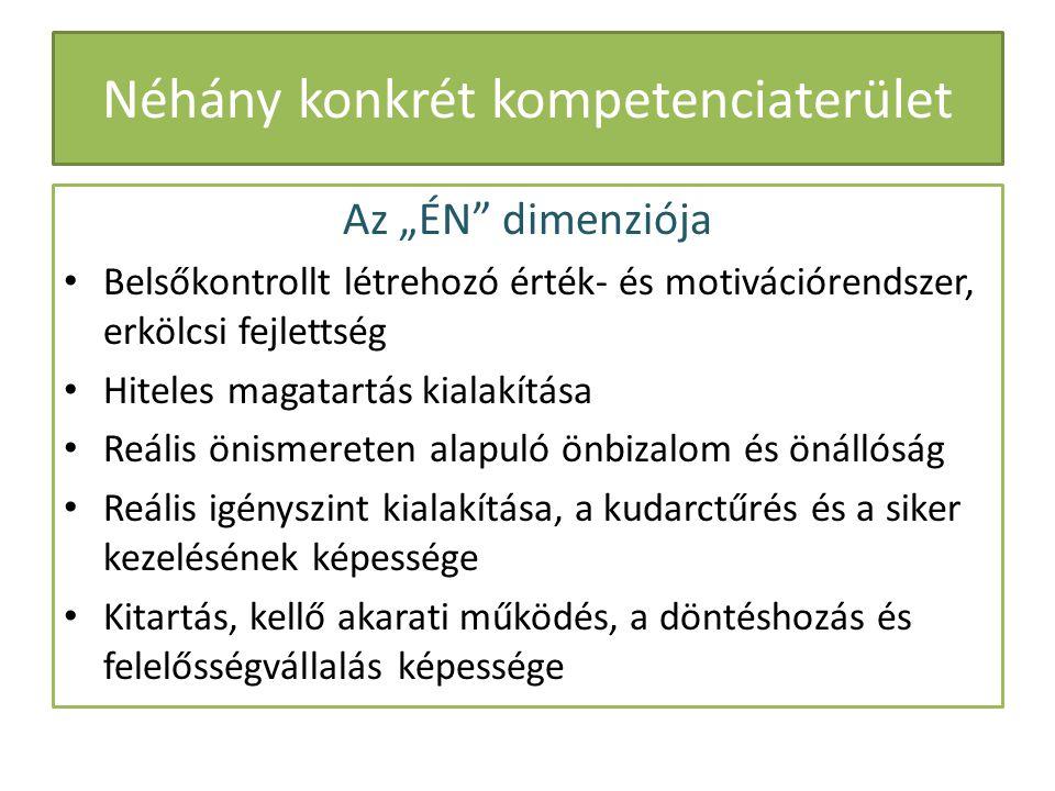 Néhány konkrét kompetenciaterület