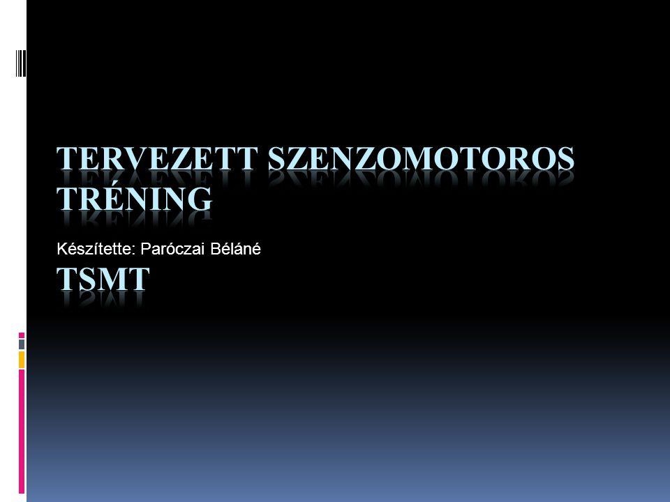 Tervezett szenzomotoros tréning TSMT
