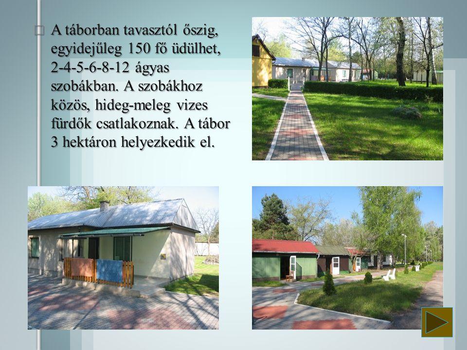 A táborban tavasztól őszig, egyidejűleg 150 fő üdülhet, 2-4-5-6-8-12 ágyas szobákban.