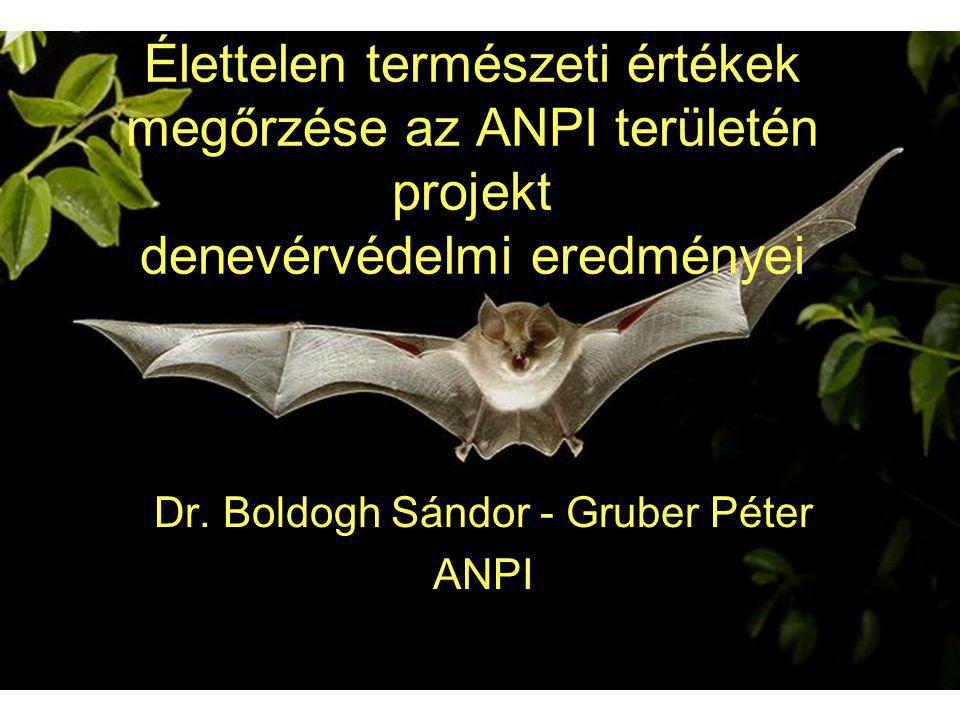 Dr. Boldogh Sándor - Gruber Péter ANPI