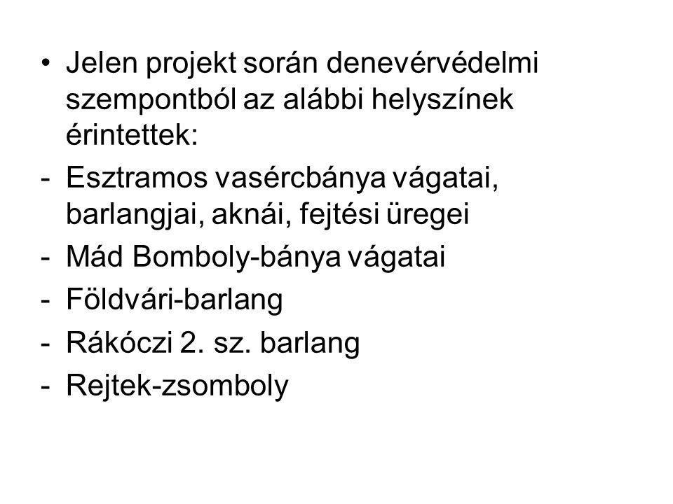 Jelen projekt során denevérvédelmi szempontból az alábbi helyszínek érintettek: