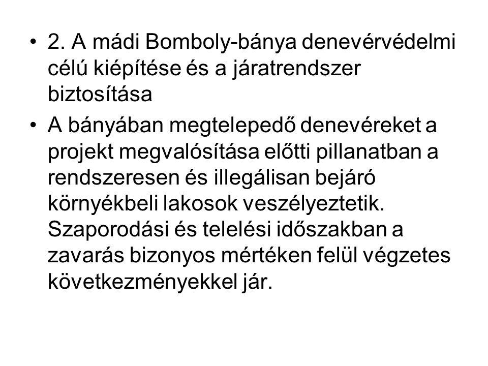 2. A mádi Bomboly-bánya denevérvédelmi célú kiépítése és a járatrendszer biztosítása