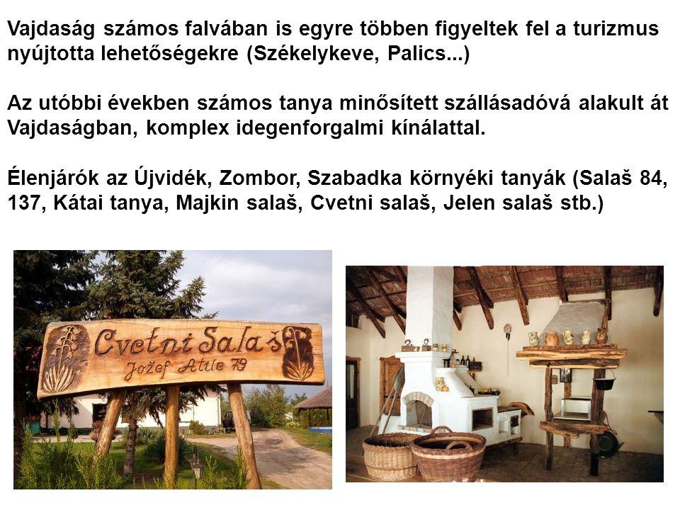 Vajdaság számos falvában is egyre többen figyeltek fel a turizmus nyújtotta lehetőségekre (Székelykeve, Palics...)