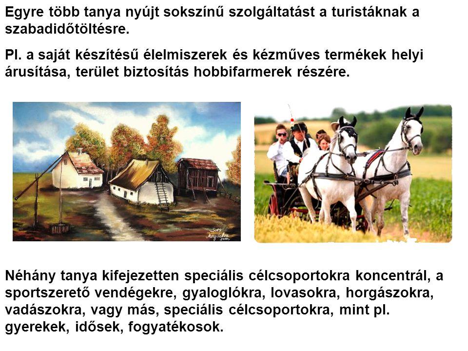 Egyre több tanya nyújt sokszínű szolgáltatást a turistáknak a szabadidőtöltésre.