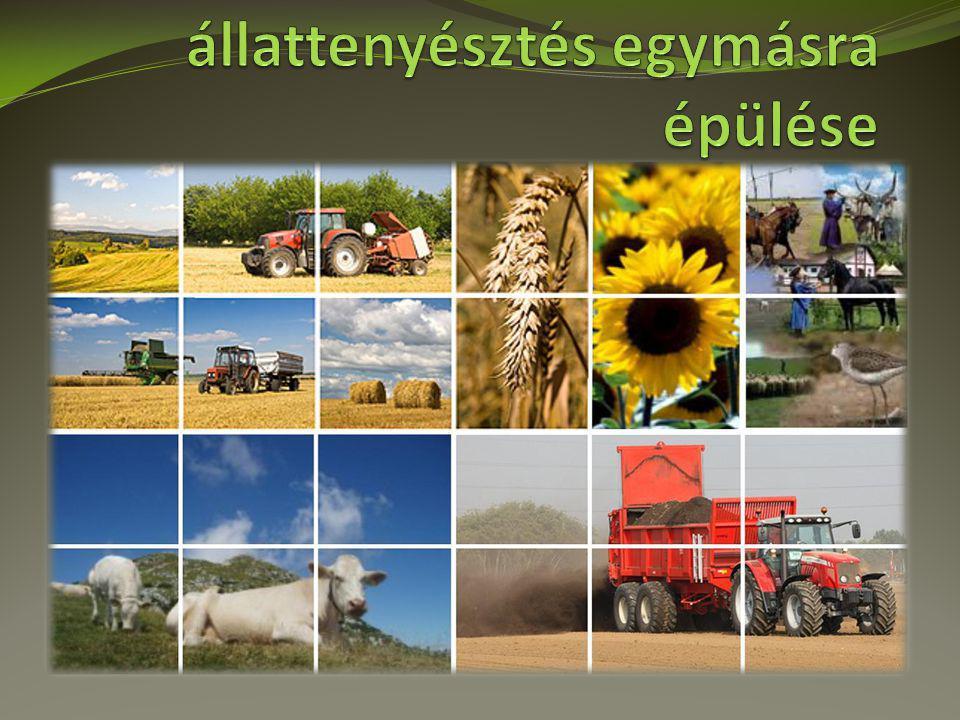 A növénytermesztés és állattenyésztés egymásra épülése