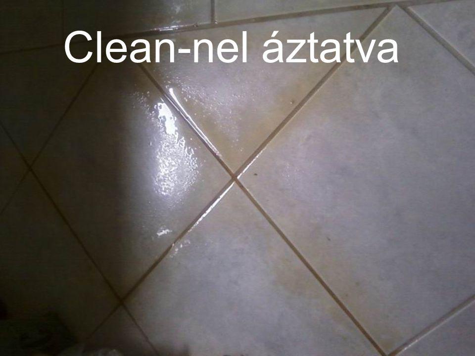 Clean-nel áztatva