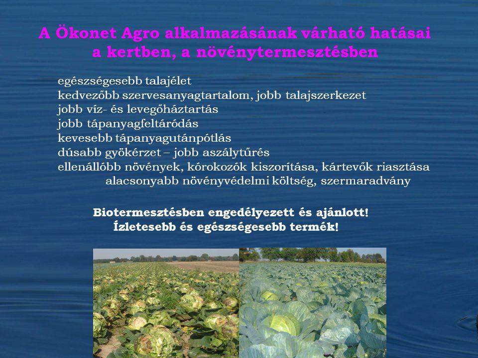 A Ökonet Agro alkalmazásának várható hatásai a kertben, a növénytermesztésben