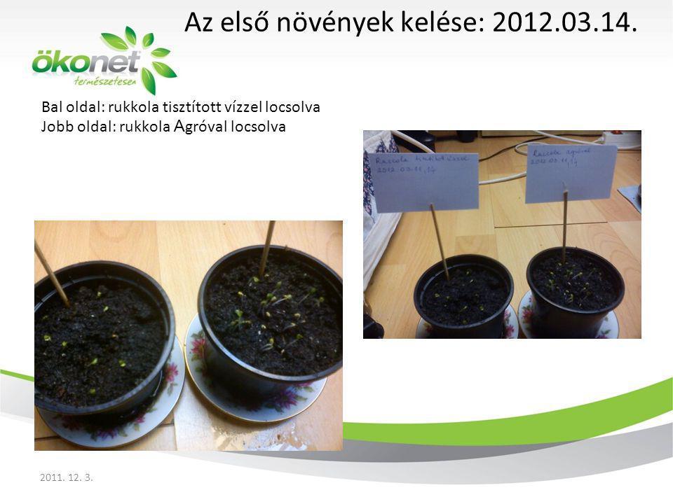 Az első növények kelése: 2012.03.14.