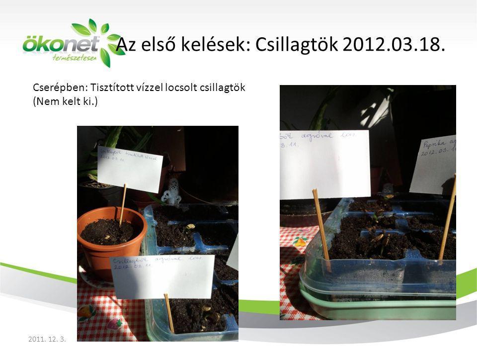 Cserépben: Tisztított vízzel locsolt csillagtök (Nem kelt ki.)