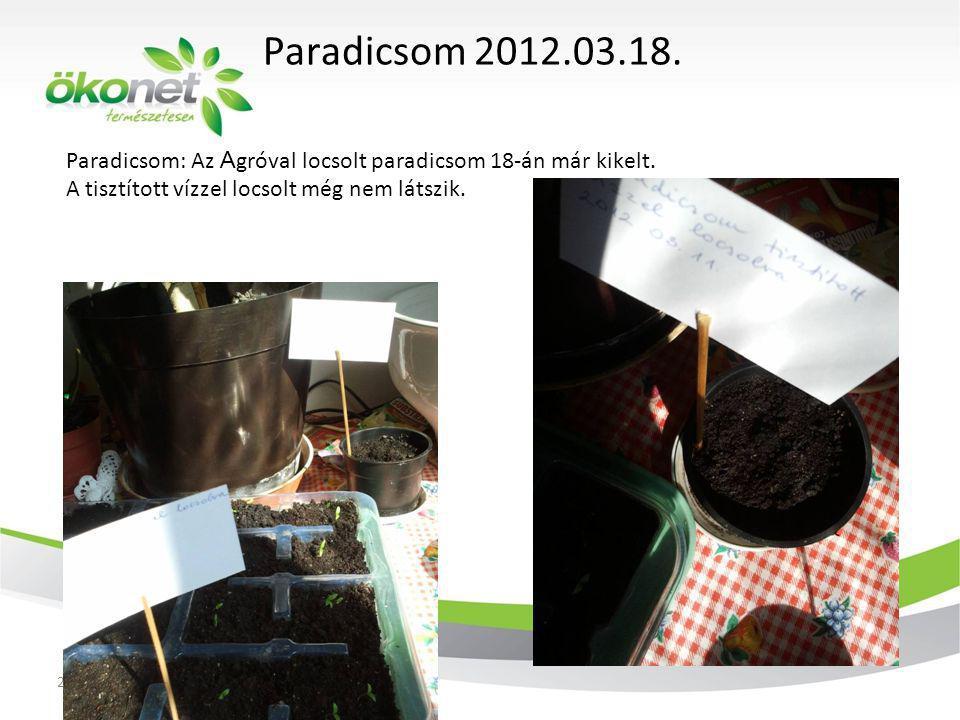 Paradicsom 2012.03.18. Paradicsom: Az Agróval locsolt paradicsom 18-án már kikelt. A tisztított vízzel locsolt még nem látszik.