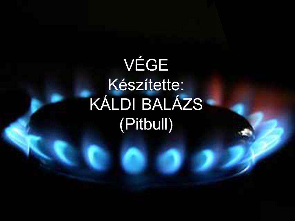 VÉGE Készítette: KÁLDI BALÁZS (Pitbull)