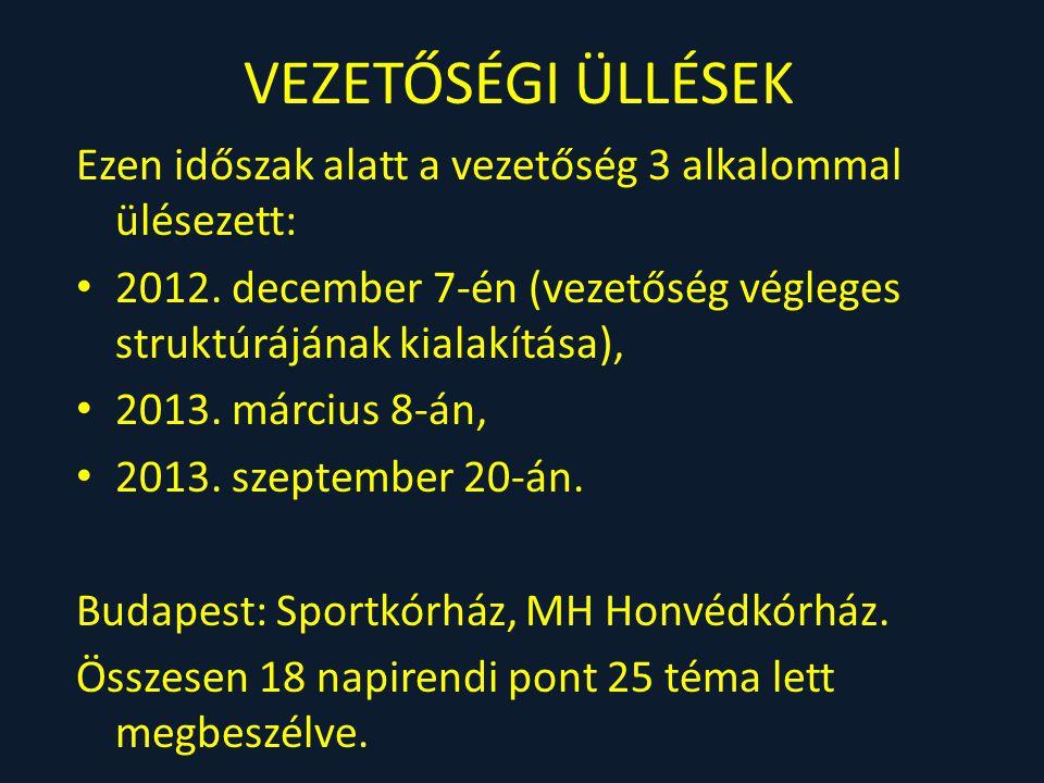 VEZETŐSÉGI ÜLLÉSEK Ezen időszak alatt a vezetőség 3 alkalommal ülésezett: 2012. december 7-én (vezetőség végleges struktúrájának kialakítása),