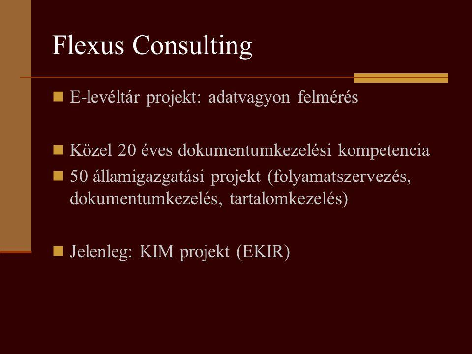 Flexus Consulting E-levéltár projekt: adatvagyon felmérés