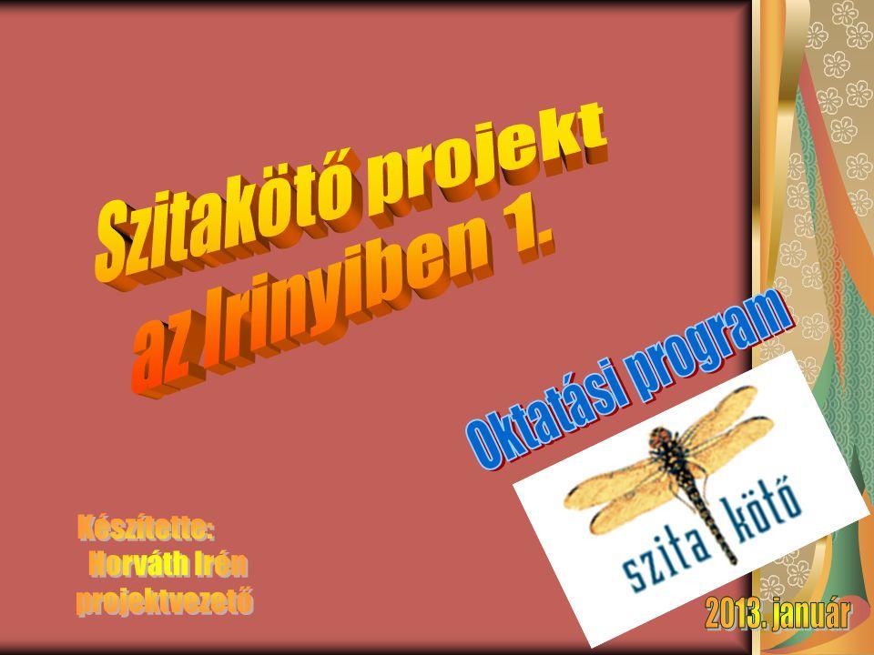 Szitakötő projekt az Irinyiben 1. Készítette: Horváth Irén