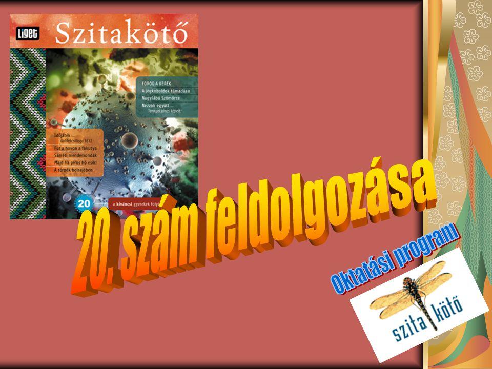 20. szám feldolgozása Oktatási program