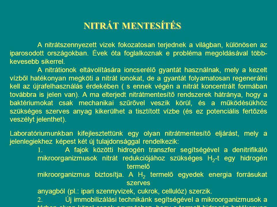 NITRÁT MENTESÍTÉS