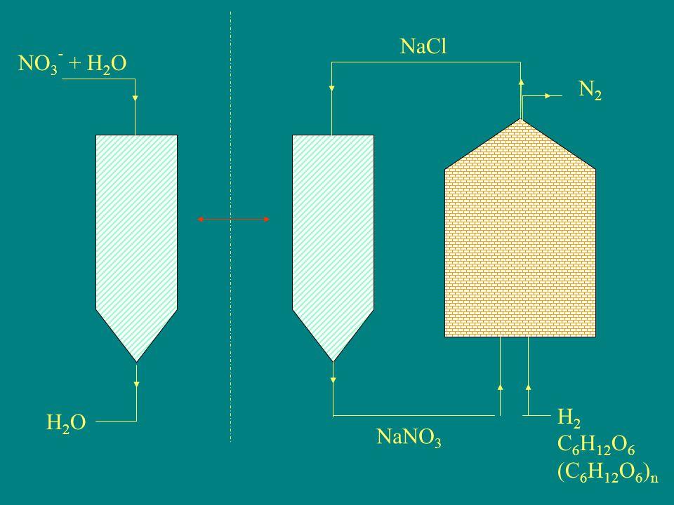 NaCl NO3- + H2O N2 H2 C6H12O6 (C6H12O6)n H2O NaNO3