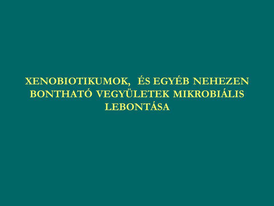 XENOBIOTIKUMOK, ÉS EGYÉB NEHEZEN BONTHATÓ VEGYÜLETEK MIKROBIÁLIS LEBONTÁSA
