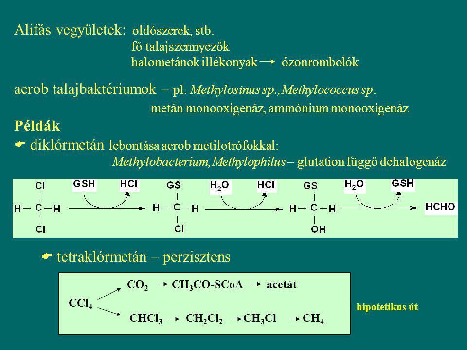 Alifás vegyületek: oldószerek, stb. fő talajszennyezők