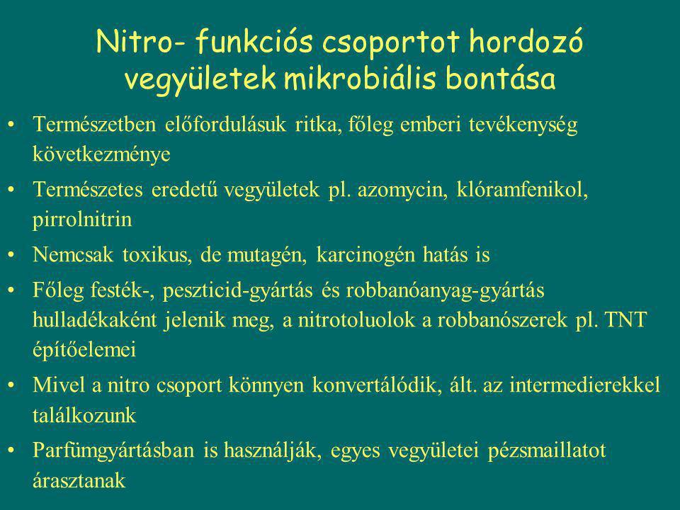 Nitro- funkciós csoportot hordozó vegyületek mikrobiális bontása