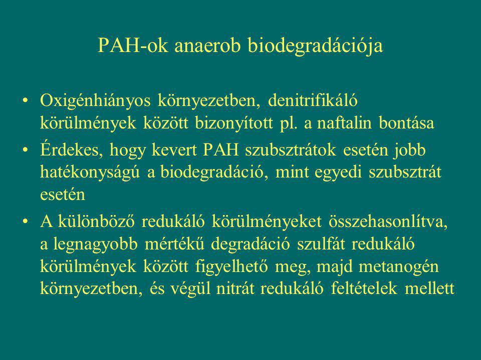 PAH-ok anaerob biodegradációja