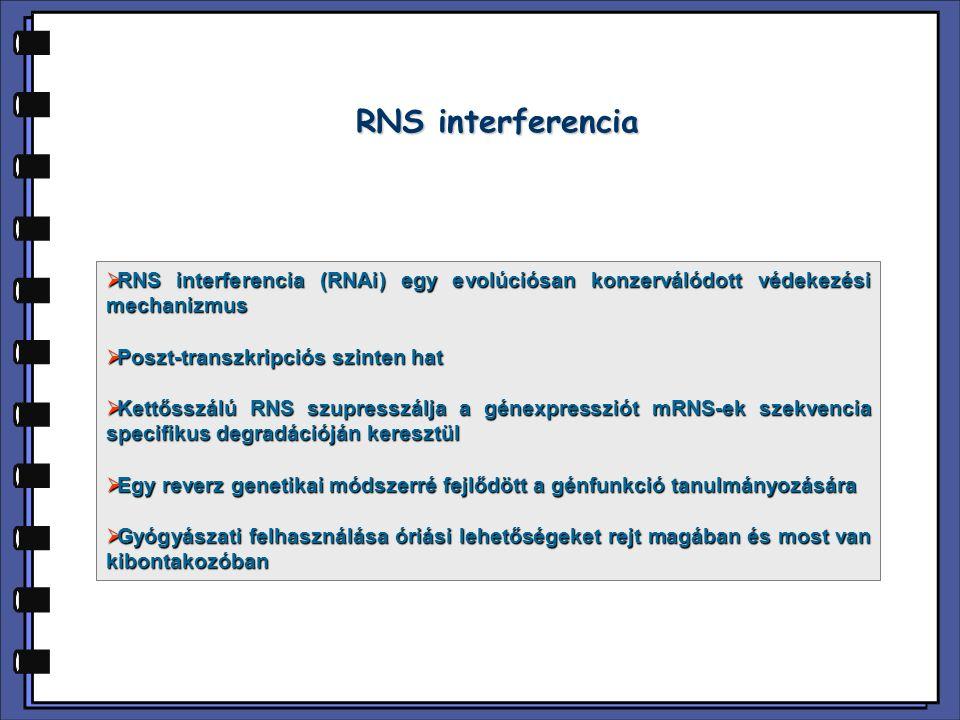 RNS interferencia RNS interferencia (RNAi) egy evolúciósan konzerválódott védekezési mechanizmus. Poszt-transzkripciós szinten hat.