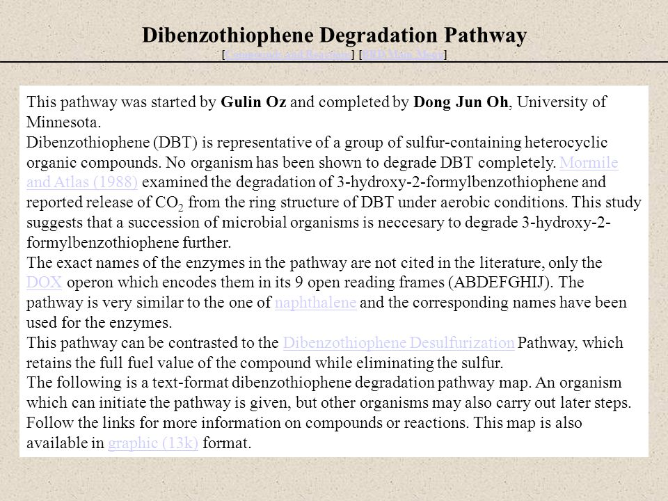 Dibenzothiophene Degradation Pathway