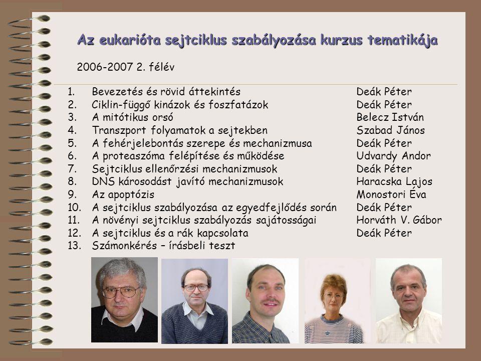 Az eukarióta sejtciklus szabályozása kurzus tematikája