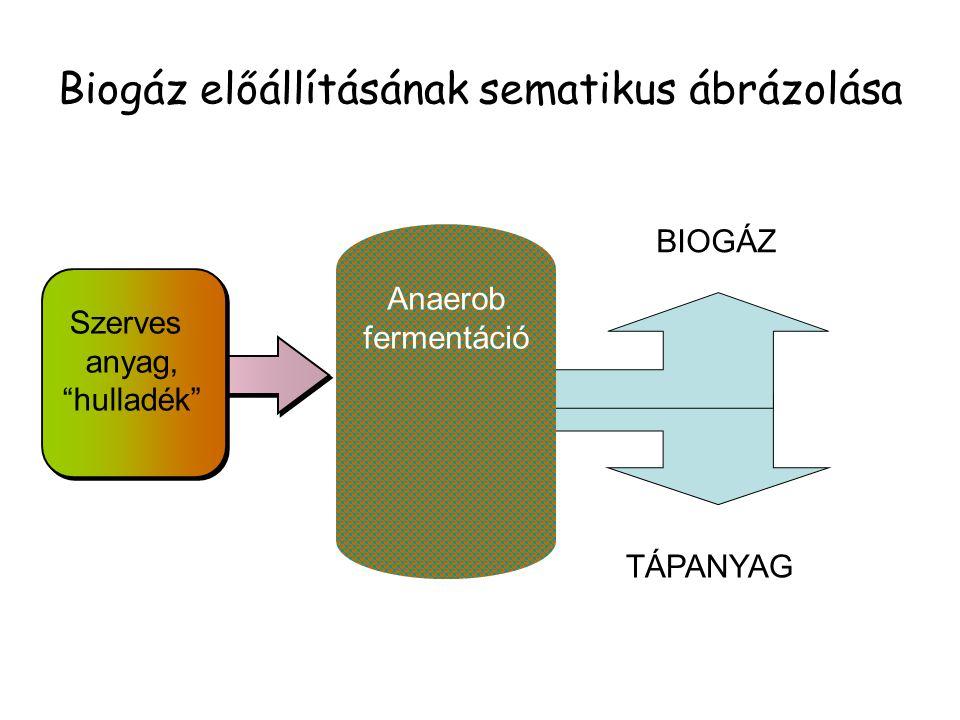 Biogáz előállításának sematikus ábrázolása