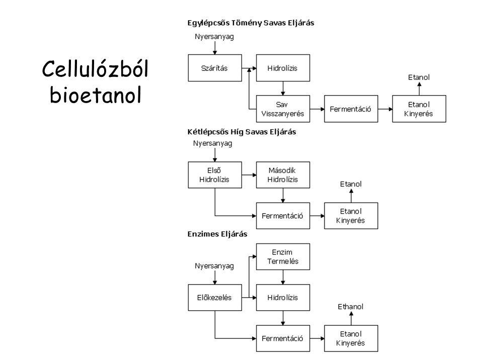 Cellulózból bioetanol