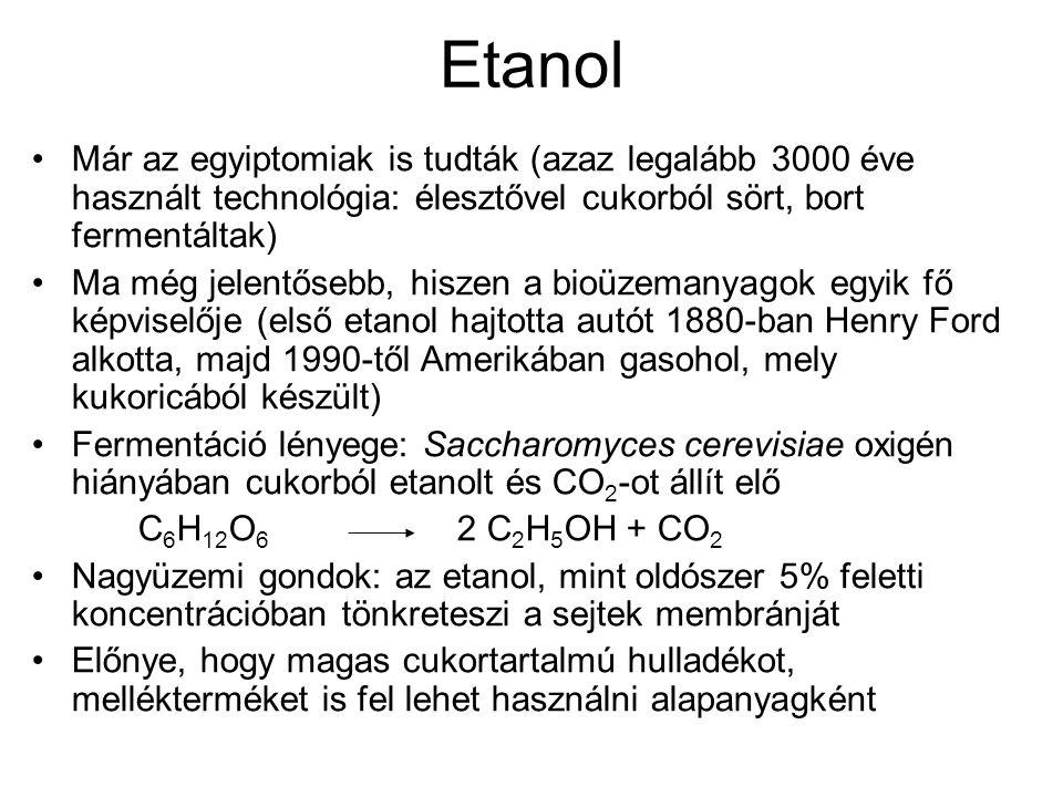 Etanol Már az egyiptomiak is tudták (azaz legalább 3000 éve használt technológia: élesztővel cukorból sört, bort fermentáltak)