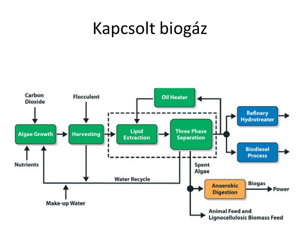 Kapcsolt biogáz