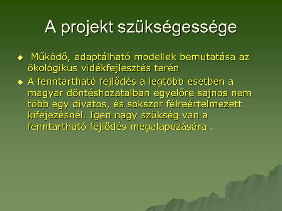 A projekt szükségessége