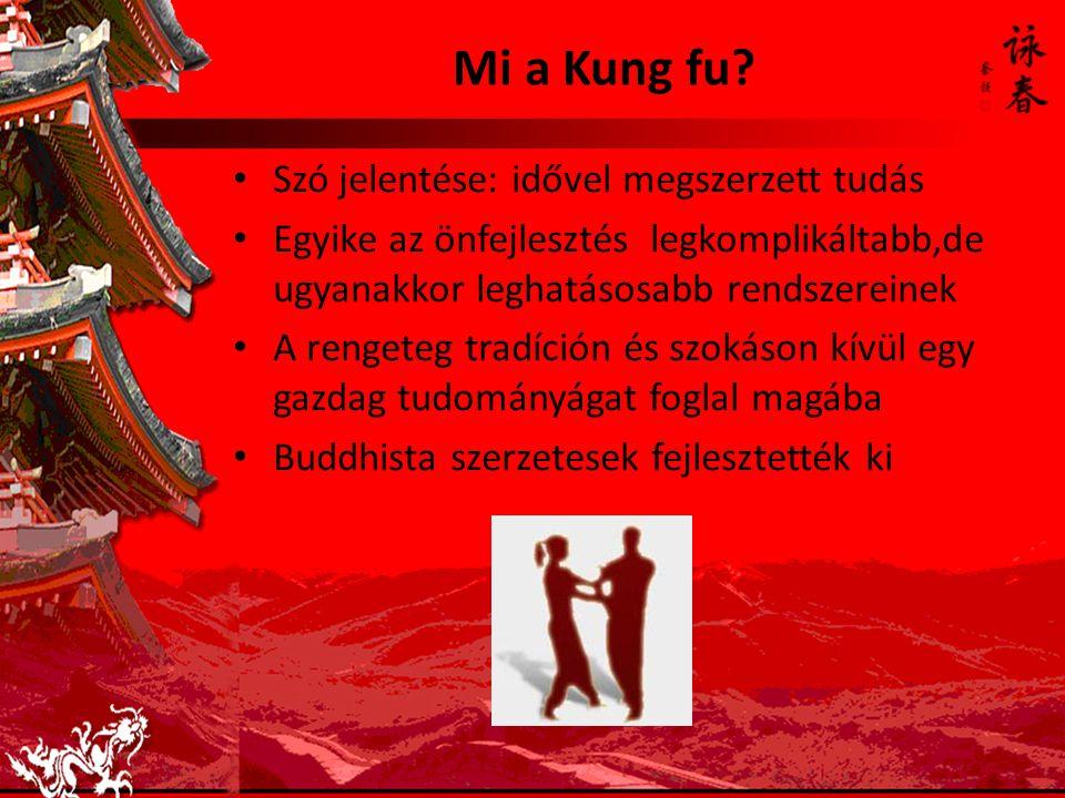Mi a Kung fu Szó jelentése: idővel megszerzett tudás