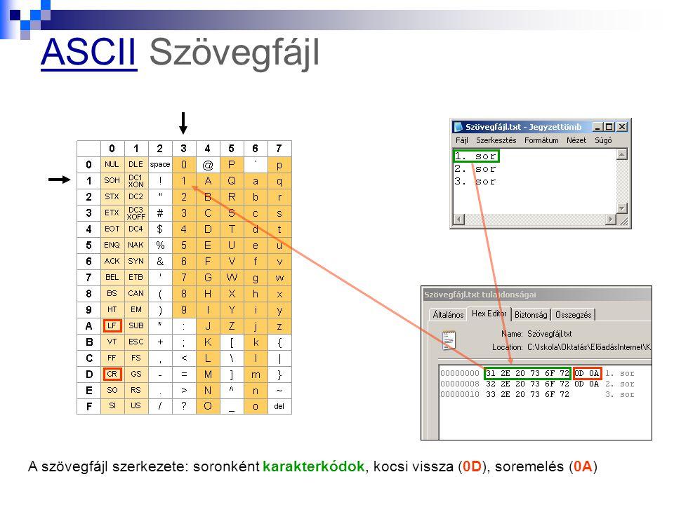 ASCII Szövegfájl A szövegfájl szerkezete: soronként karakterkódok, kocsi vissza (0D), soremelés (0A)