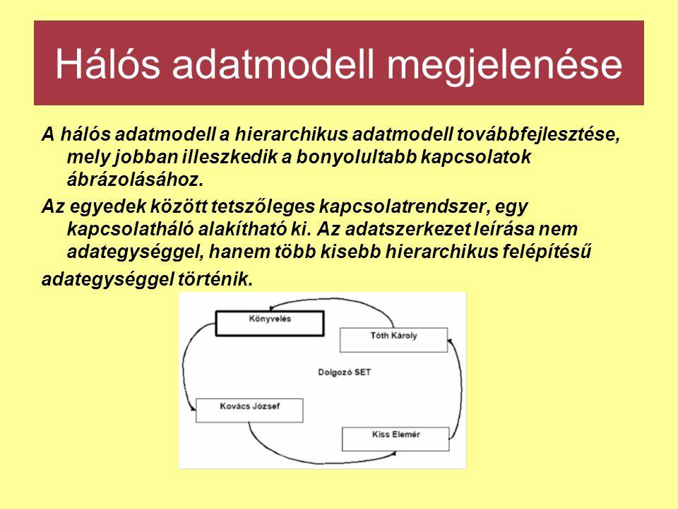 Hálós adatmodell megjelenése