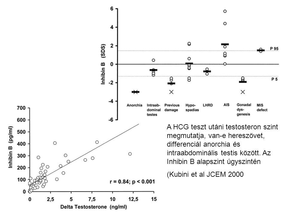 A HCG teszt utáni testosteron szint megmutatja, van-e hereszövet, differenciál anorchia és intraabdominális testis között. Az Inhibin B alapszint úgyszintén