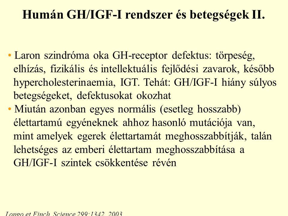 Humán GH/IGF-I rendszer és betegségek II.