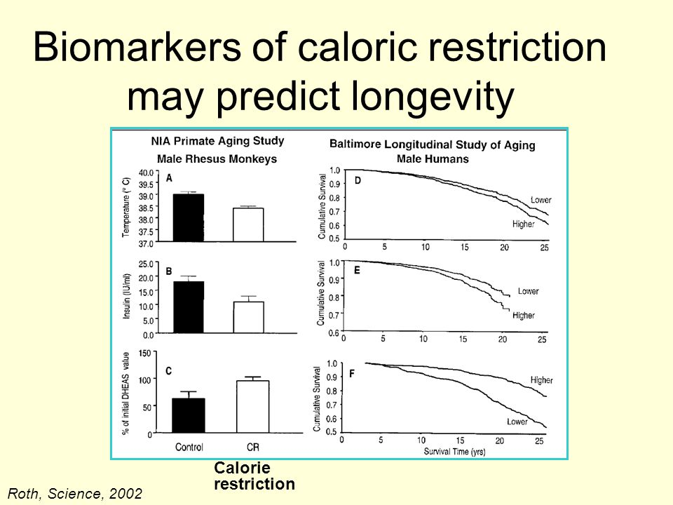 Biomarkers of caloric restriction may predict longevity