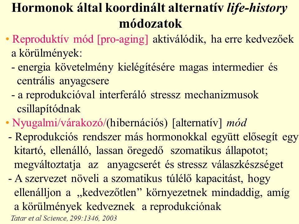 Hormonok által koordinált alternatív life-history