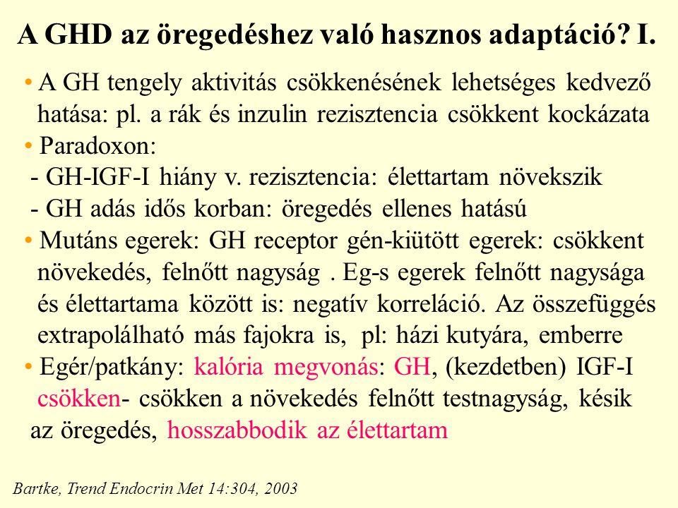 A GHD az öregedéshez való hasznos adaptáció I.