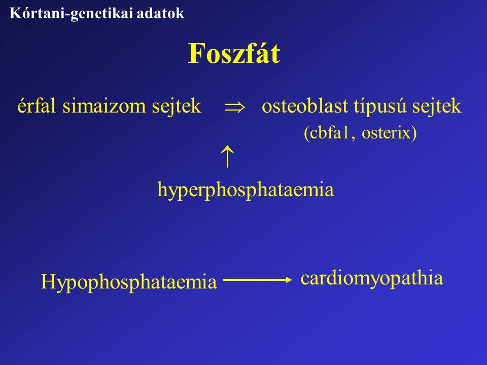 Foszfát hyperphosphataemia