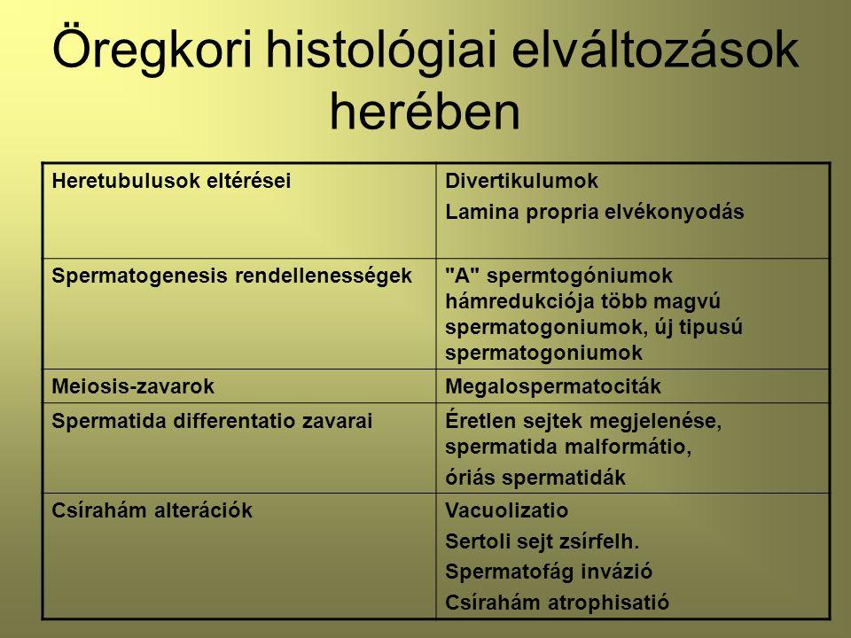 Öregkori histológiai elváltozások herében