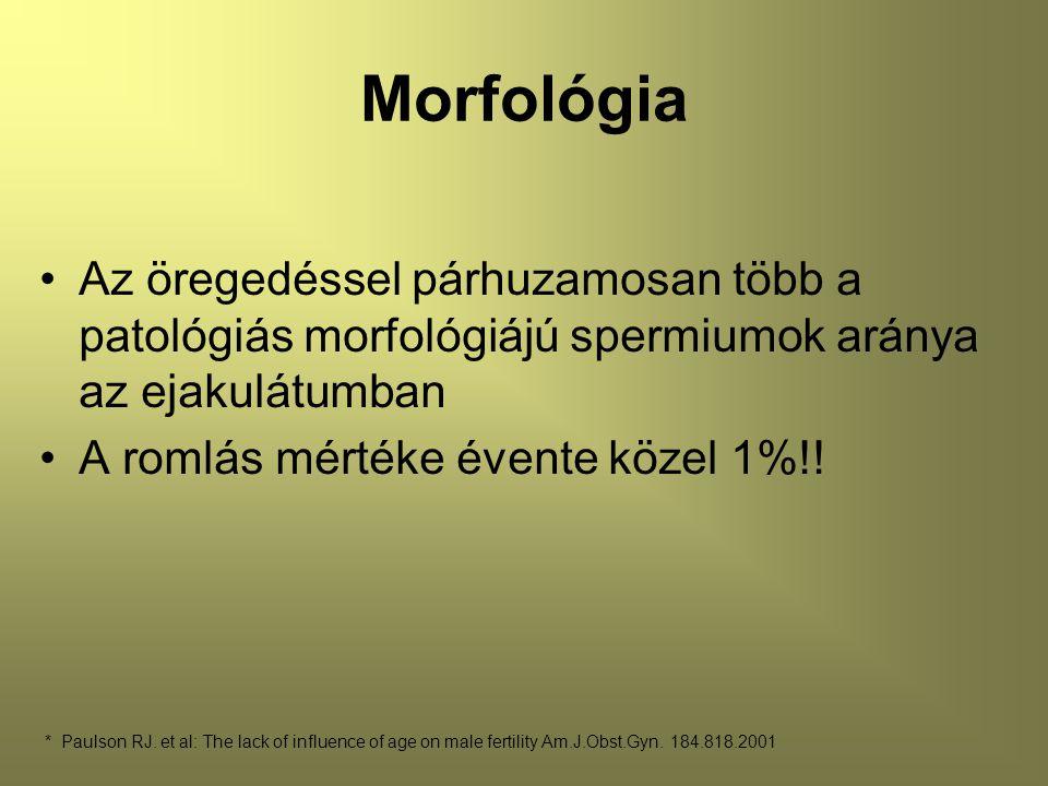 Morfológia Az öregedéssel párhuzamosan több a patológiás morfológiájú spermiumok aránya az ejakulátumban.