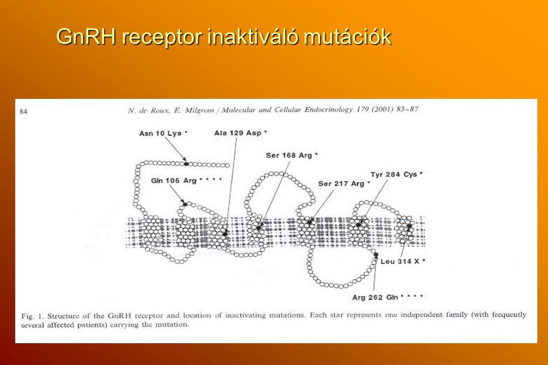 GnRH receptor inaktiváló mutációk